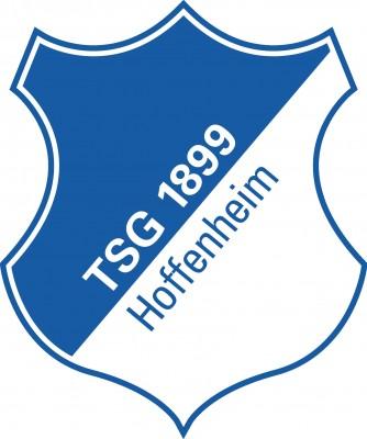 TSG 1899 Hoffenheim Fußball-Spielbetriebs GmbH logo